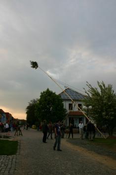 Stavění Máje 2011